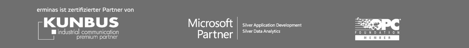 erminas Microsoft Silver Partner